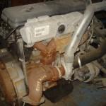 DSC09228